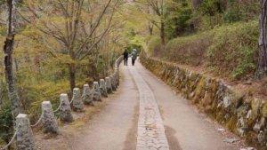 奈良県・吉野山中